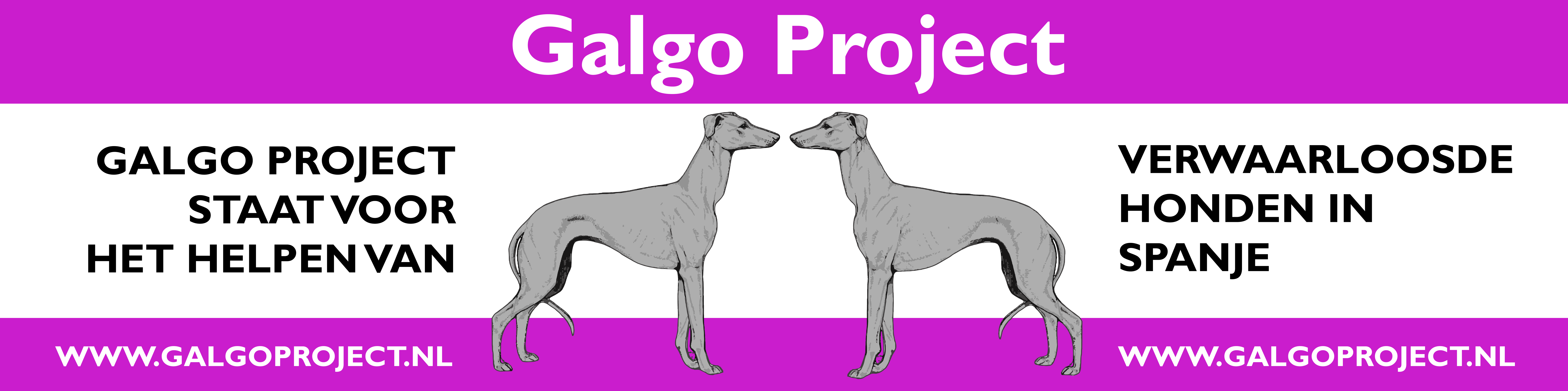 Bord Galgo Project 2-01